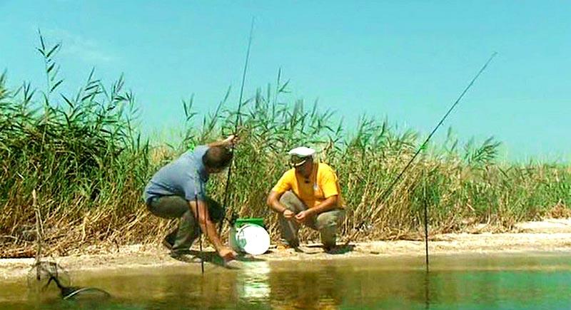 Рыбалка На Отдыхе В Ейске И Районе (Это Удовольствие)